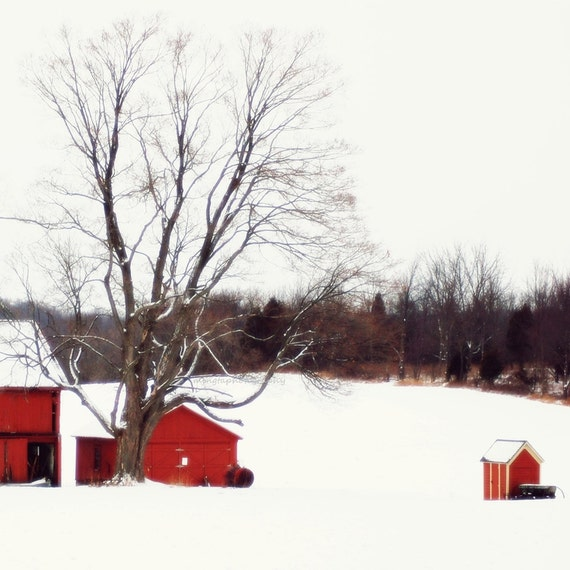 The red barn - Snow on the red barn nursery decor White Christmas First snow Nature Winter old farm house beauty Fine Art Print 8x8