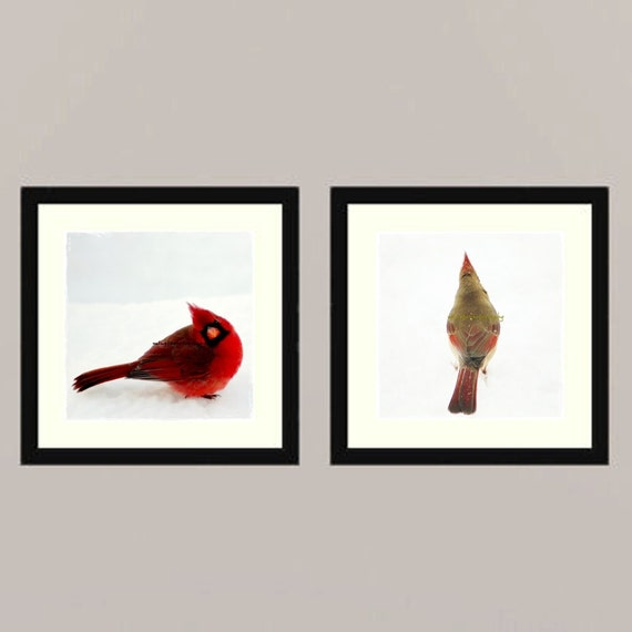Cardinals set - Cardinal couple angry birds winter bird in snow Feathered friend bird watching Love bird wall decor Birder Fine Art two 5x5