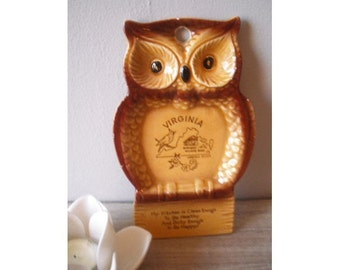 vintage Owl spoon rest .. Virginia Souvenir Kitsch