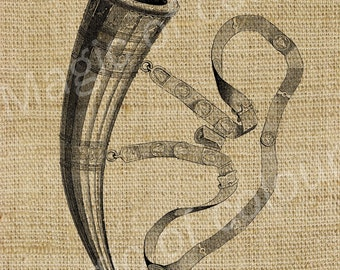 Horn - Download Digital Image Sheet Transfer to Fabric - Music N4 - 8.5x11 Inch (A4) JPG images