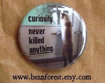 curiosity never killed anything - pinback button badge