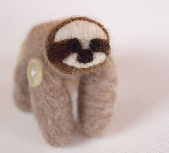 Sahara the Pocket Sloth