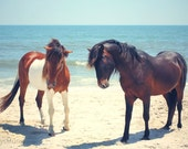 Assateague Ponies on the Beach Art Photograph for Beach House Decor Print, Blue Ocean Seascape with Horses, Beach House Print, Tribal