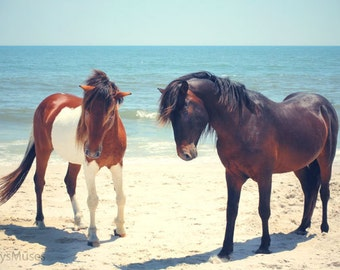 Beach Photography, Assateague Ponies Pony Photo, Tribal Home Decor, Blue  Seascape, Horses on Ocean, Bohemian