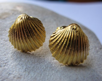 golden shell - ear studs