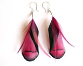 Iridescent Feather Earrings in Pinks, Purples and Blacks
