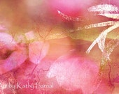 """Floral Photography - Pink Abstract Art - Fine Art Floral Photos - Pink Romantic Tulips - Floral Fine Art Photograph 6"""" x 10"""""""