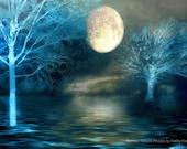Surreal Nature Photography, Dreamy Blue Moon Fantasy Nature, Fairytale Blue Moon Trees Landscape, Surreal Fine Art Nature Moon Photography