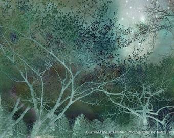 Teal Nature Photography, Dreamy Teal Aqua Trees, Fantasy Fairy Lights Ethereal Trees, Fairytale Teal Nature Photography, Surreal Nature Tree