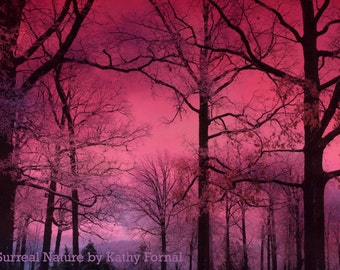Nature Photography, Dreamy Fantasy Fairytale Trees Sky, Dark Pink Surreal Woodlands Forest, Haunting Forest Dark Pink Nature Photography