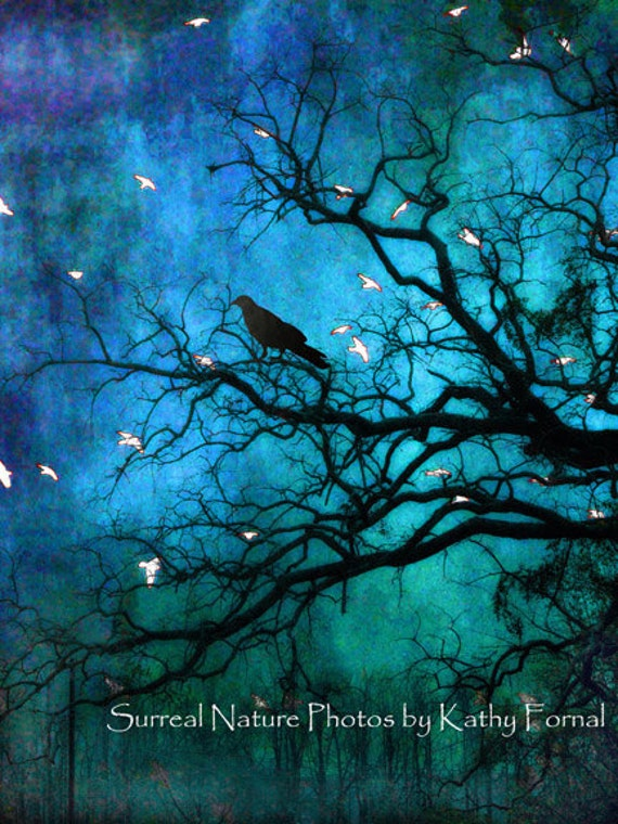 50% OFF SALE Nature Raven Photography, Surreal Fantasy Trees, Gothic Raven Crow Art, Blue Fantasy Nature Tree Limbs, Spooky Haunting Raven