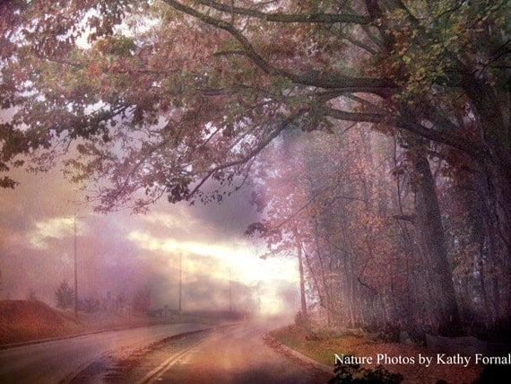 Nature Photography, Dreamy Autumn Pink Fall Tree Landscape, Romantic South Carolina Trees, Serene Peaceful Road, Nature Trees Photography