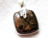 Turritella Agate Sterling Silver Pendant