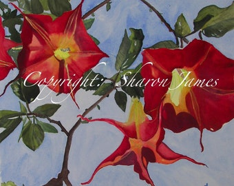 Angel Trumpets-Original Acrylic Painting, 14 x 14 inches,  By Sharon James