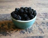 Mountain Blackberries - Photography Print