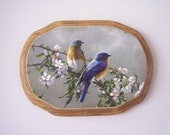 Eastern bluebird Decorative Plaque
