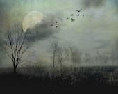 "Surreal landscape photography full moon birds gothic dark grey black autumn fall - ""Night flight"" 8 x 10"