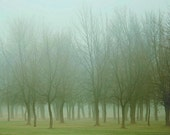 """Landscape photography foggy emerald autumn green woodland nature trees forest - """"Misty Morning"""" 8 x 10"""
