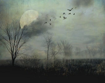 "Surreal landscape photography full moon birds gothic dark grey black autumn fall - ""Night flight"" 8 x 10"