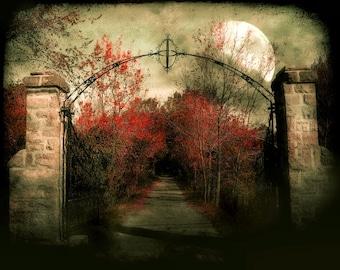 "Stone gate crimson red foliage full moon dark haunted gothic black - ""Le chemin St Louis""  8  x 10"