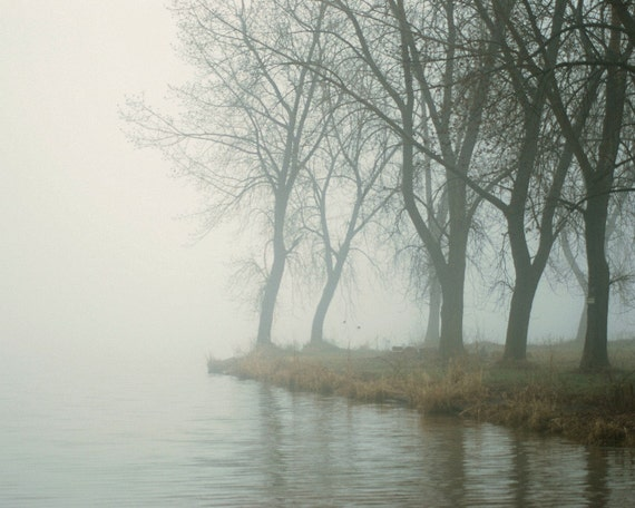 """Dreamy surreal fog landscape forest woodland riverfront trees muted colors - """"Misty River""""  8 x 10"""