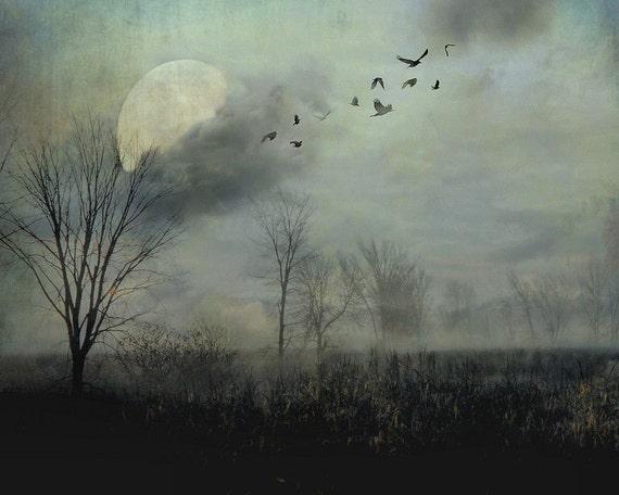 "Surreal landscape photography full moon birds gothic dark grey black - ""Night flight"" 8 x 10"