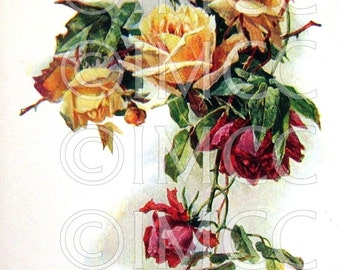 Digital Download Scan Vintage Shabby Sweet Chic Roses Graphic Victorian Clip Art