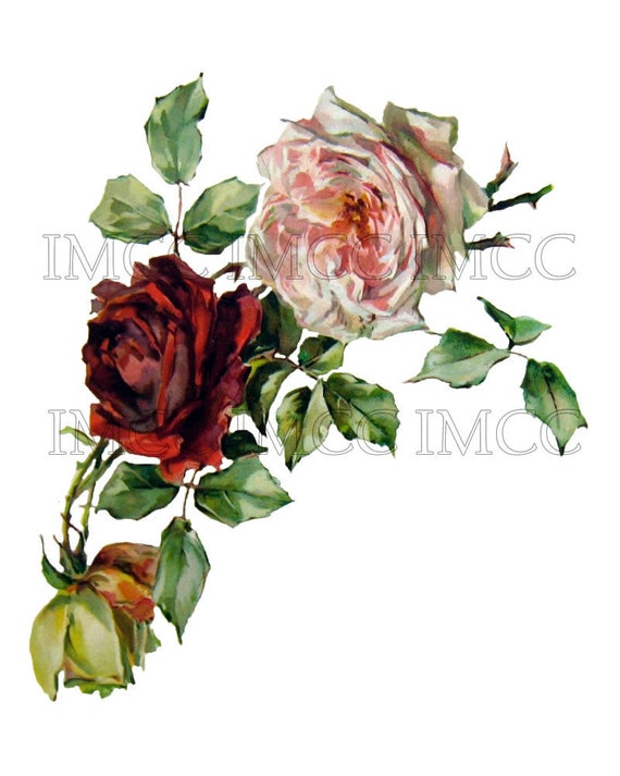 Chic Victorian Shabby Pink Red Roses - Digital Download Scan U Print ECS Item ROSES1