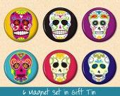 Magnets - Sugar Skulls 6 Magnet Set in Gift Tin