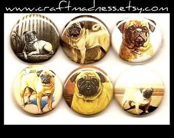 Pugs button magnets or pinbacks, decorative art