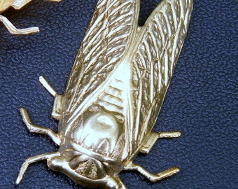 Cicada Stampings Raw Brass 2 pieces 49mm x 30mm