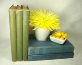Book Bundle - 'Blueberry and Lime' - Instant Library Book Collection