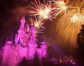 Walt Disney World, EPCOT, Animal Kingdom, Disney Studios Magic Kingdom  Photos for Scrapbooking paper crafts