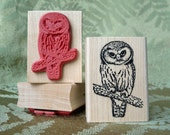 Small Saw-whet Owl rubber stamp from oldislandstamps