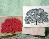 Oak Tree rubber stamp from oldislandstamps