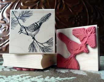 Blue Jay bird rubber stamp from oldislandstamps