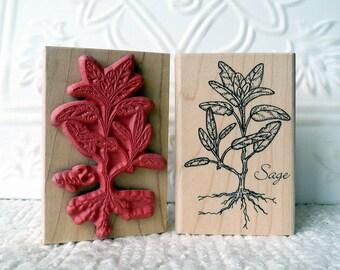 Sage plant rubber stamp from oldislandstamps