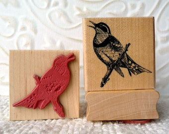 Varied Thrush Bird rubber stamp from oldislandstamps