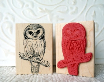 Saw Whet Owl rubber stamp from oldislandstamps