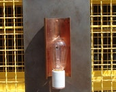 Edison Bulb Copper and Steel Light Sconce