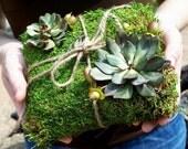 Moss Ring Bearer Pillow