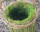 Natural Moss and Green Stem Flower Girl Basket