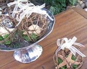 Beach Wedding Starfish/ Seashell Favors/ Ornaments - Set of four