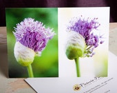 Allium I, II (Spring) Greeting Card, 5x7