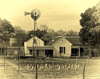 Texas Farmstead, Black and White