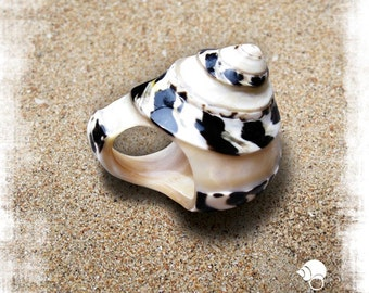 Black & White Seashell Ring