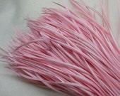 24 PCS LIGHT PINK Strung Natural Goose Biot Feathers
