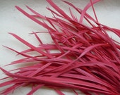 24 PCS WATERMELON RED Strung Natural Goose Biot Feathers.
