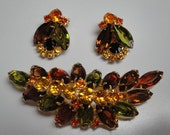 Vintage Julianna Brooch and Earring Set Autumn Colors