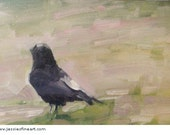 Crow Looking II, Original framed 5x7 inch oil painting, bird  impressionist style, Buy 2 Get 1 SALE